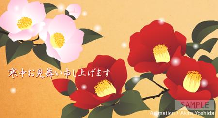 「寒椿」 カード